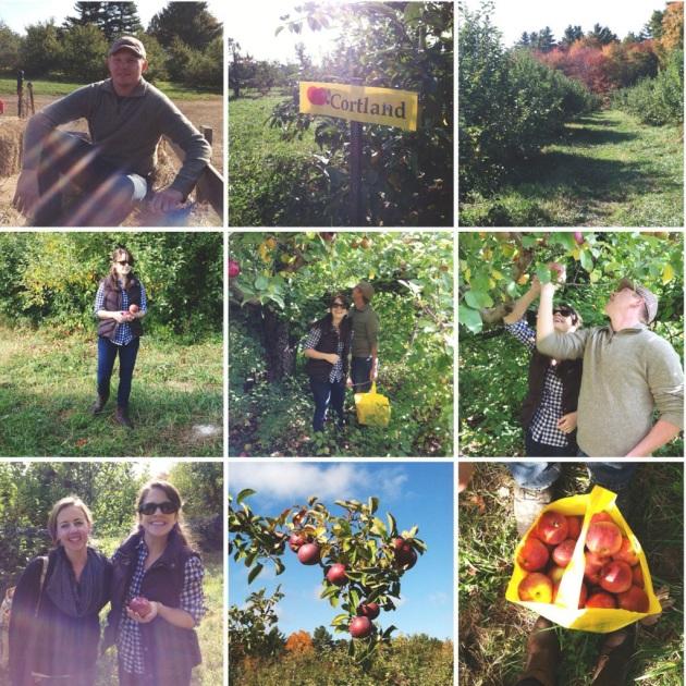 Shelburne Farm, Stow, MA | The Pomegranate Bandit